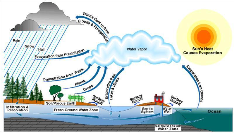 water cycle information - water damage los angeles